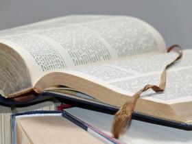 Buch-Lektorat